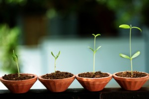 personal growth equals success