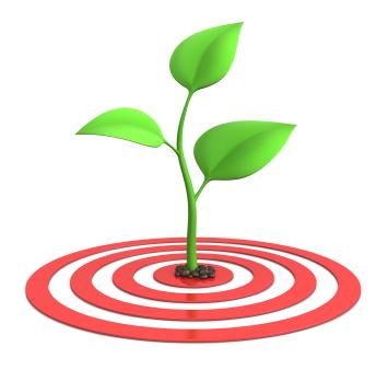 target your market